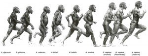 evolutionofrunning